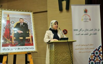 الوزيرة المصلي تشيد بالعمل المشترك لتحقيق حماية النساء والفتيات من العنف