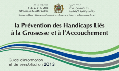 la prévention des handicaps liés à la grossesse et à l'accouchement. Guide d'information et de sensibilisation.