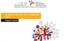 Enquête nationale sur le Handicap 2014 -Rapport détaillé –